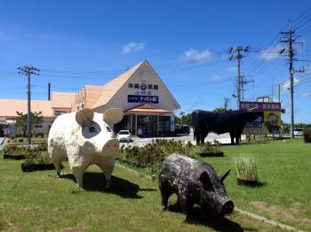 黒糖工場豚さん