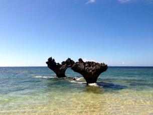 沖縄ハートロック
